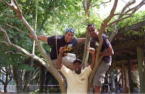 students climbing a tree on Sanford Mall
